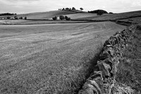 redmires field wall & hill b-w-0524